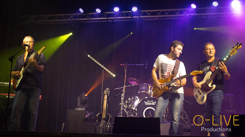 Dover Straits Tribute Dire Straits Lille Arras Concert Show Live Musique Rock Sultans